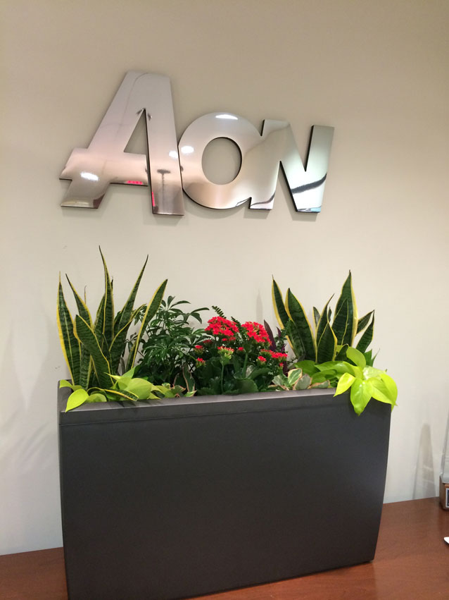 An image of a large planter with flowers