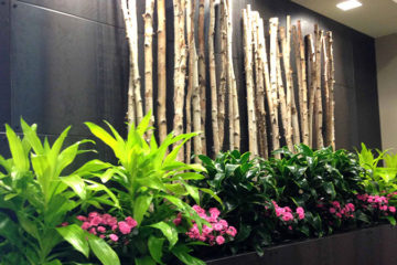 An image of a feature wall in a corporate office with a custom design
