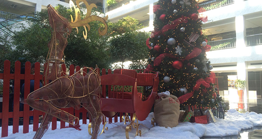 An image of a Christmas tree, deer, and a sleigh