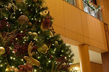 An image of a Christmas tree decorated with ornaments and lights