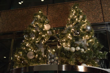 An image of a Christmas trees decorated with ornaments and lights