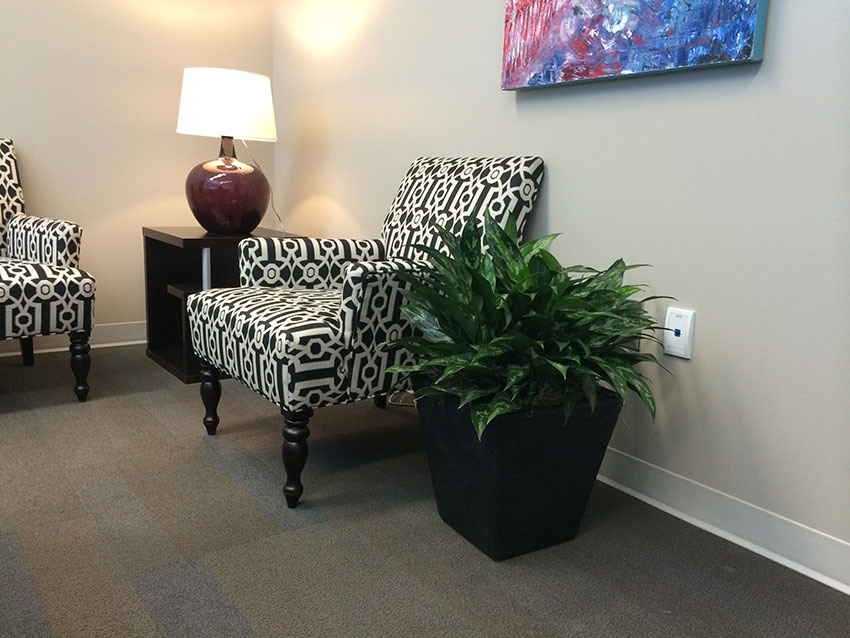 An image of planters in a tenant reception area